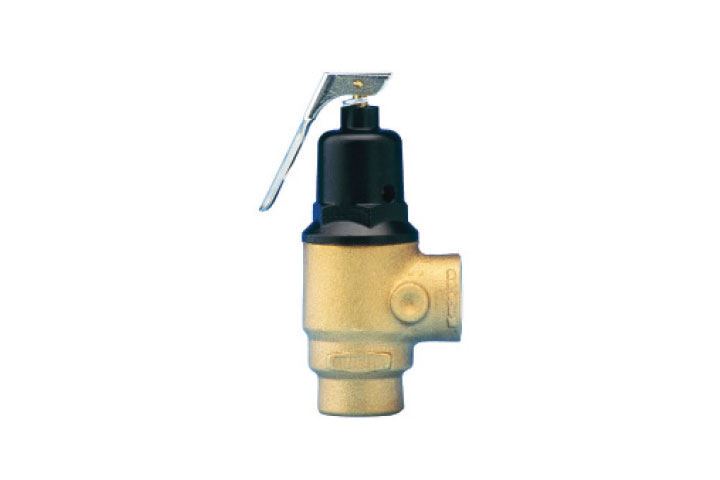 Zurn Wilkins P3000BR ASME Safety Relief Valve