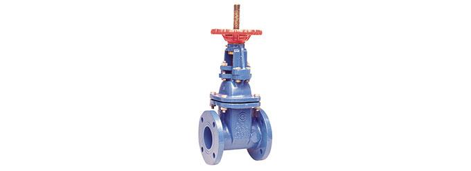 408RW-osy-gate-valve