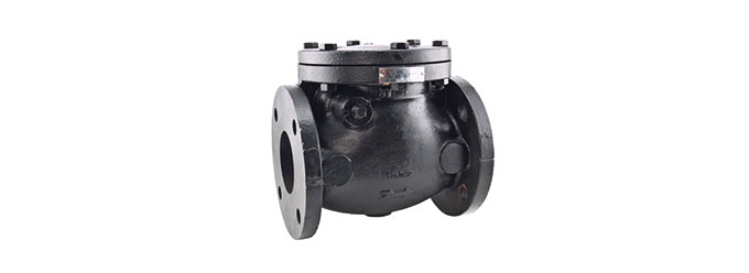 411-cast-iron-swing-check-valve