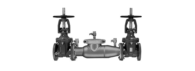 774-gate-double-check-valve-assembly
