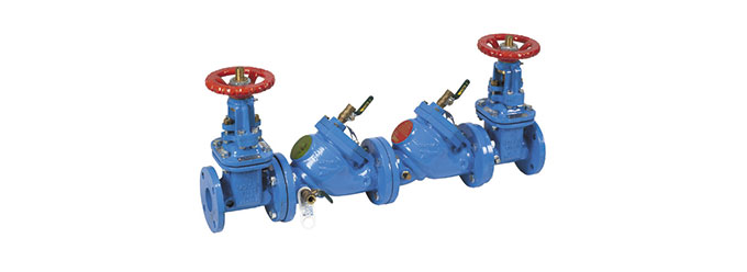709-double-check-valve-assembly-image